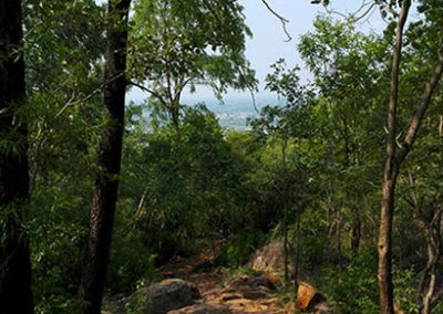 Indien-Tiruvannamalai-Wanderung-Arunachala-3