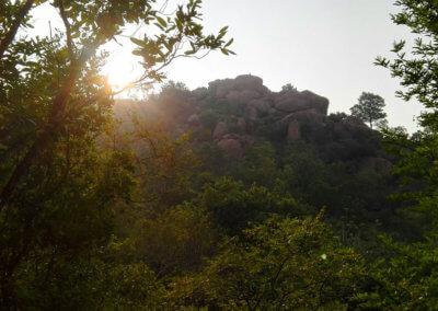 Indien-Tiruvannamalai-Wanderung-Arunachala-5